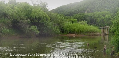 борисовка приморский край рыбалка