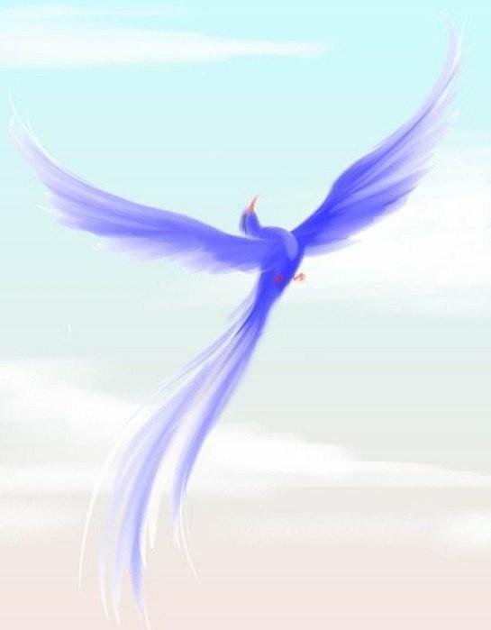 клуб знакомств синяя птица отзывы