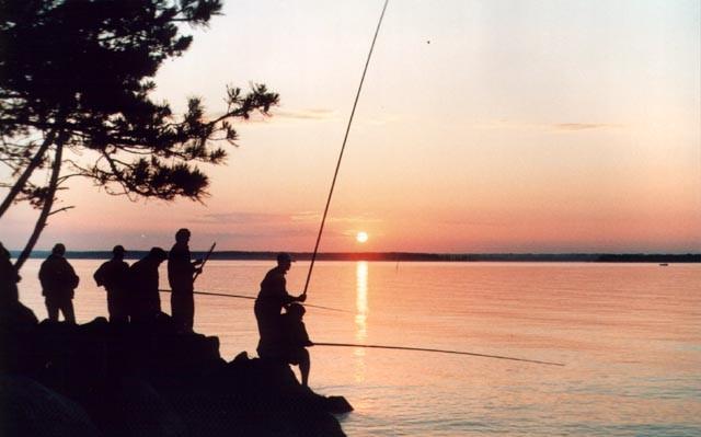 все о детском рыболовном туризме