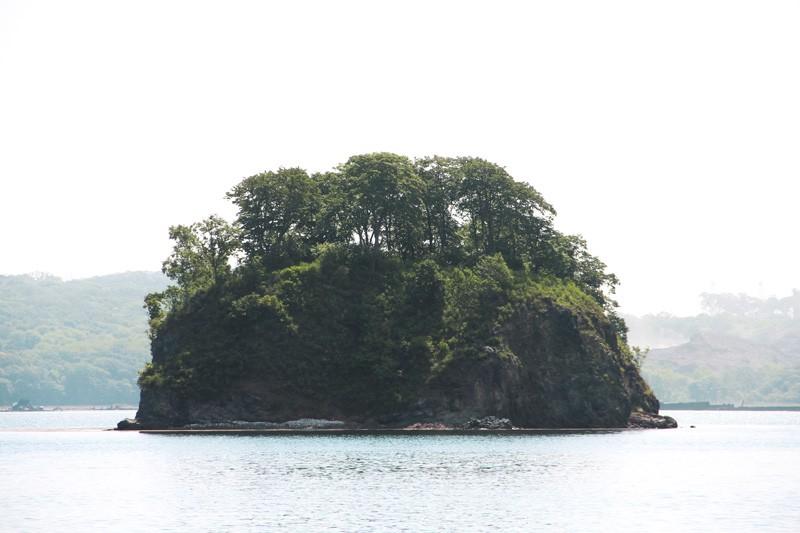 приморский край остров попова фото