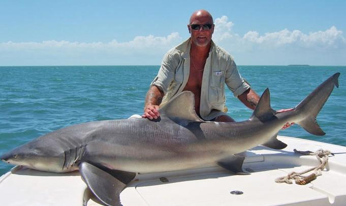 Рыбалка на акул фото