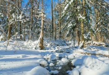 Отдых на базах Приморья зимой