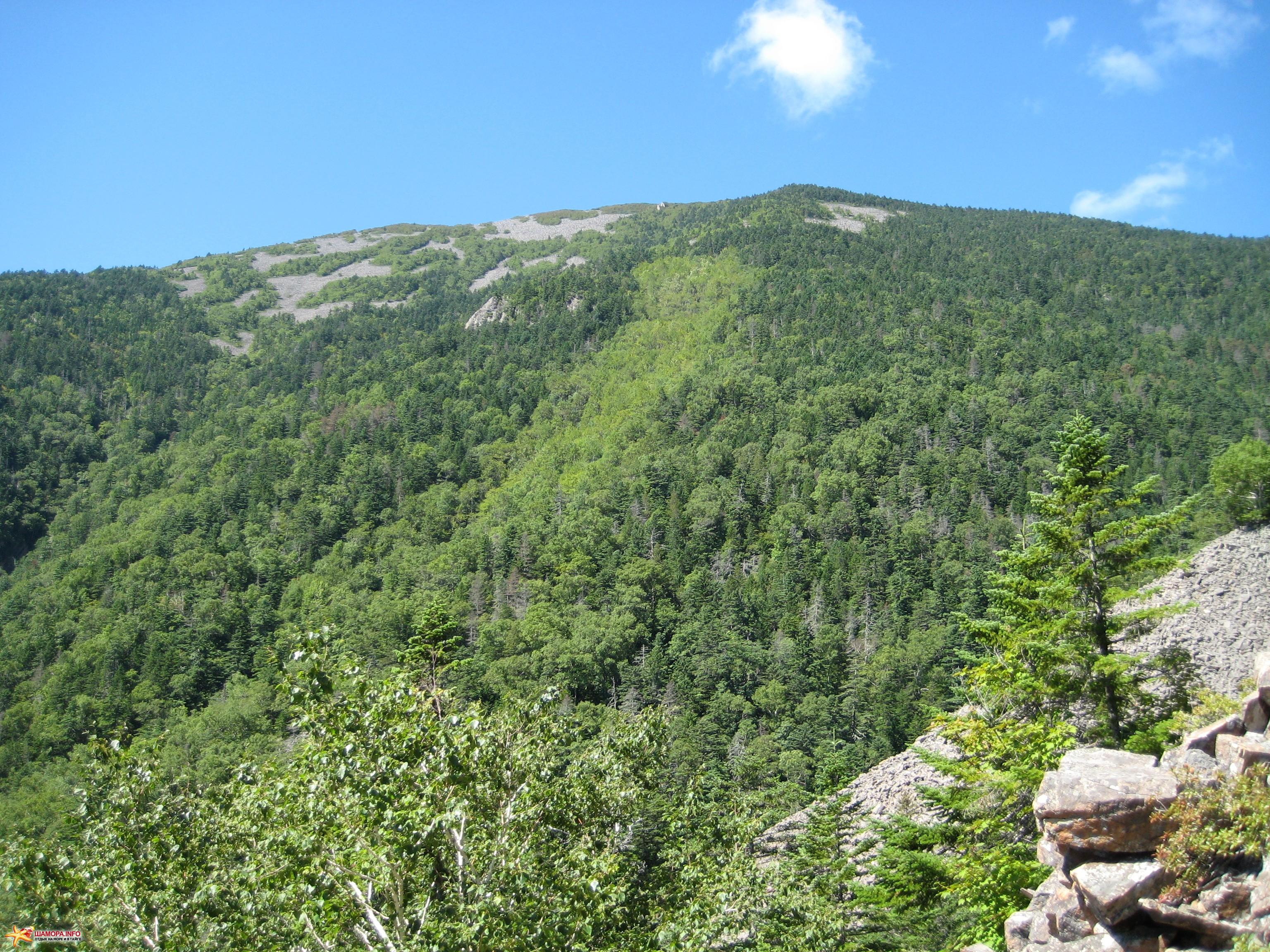 фото гора лысая