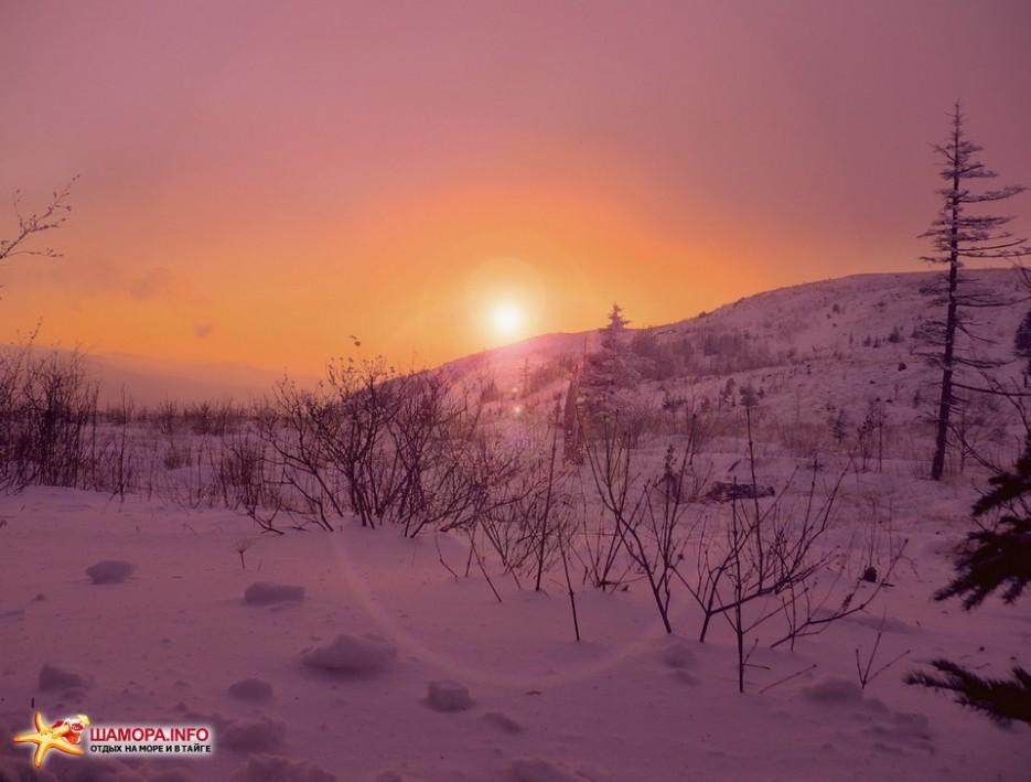 Фото 10101   НГ на Туманной