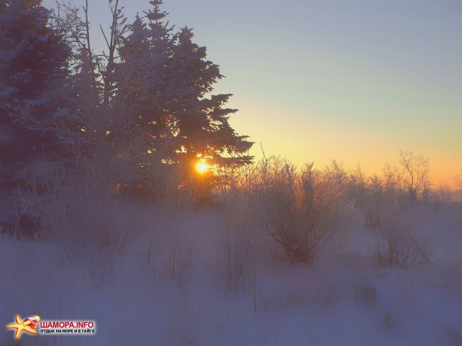 Фото 10104 | НГ на Туманной