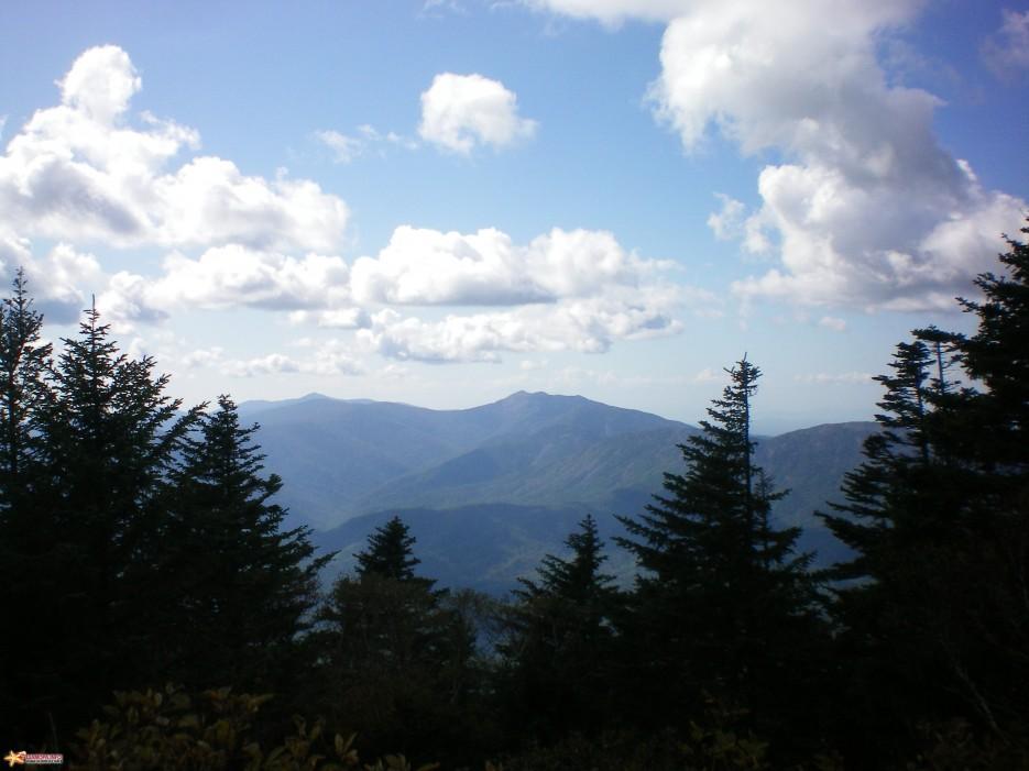 Фото 10626 | гора Скалистая(1239м)