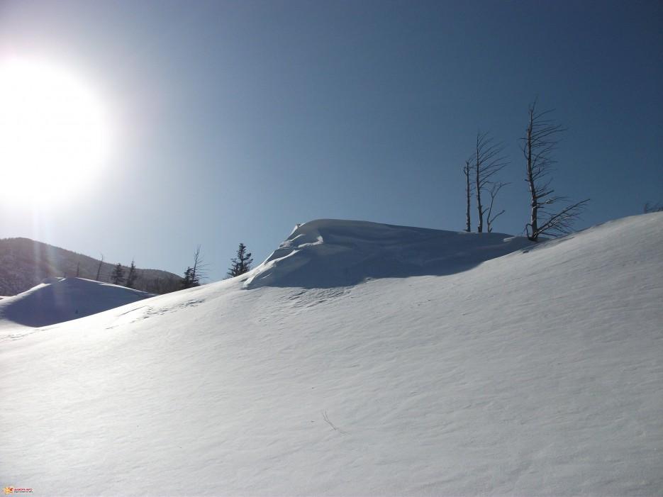 Волна | Пидан 30-31.01.2010