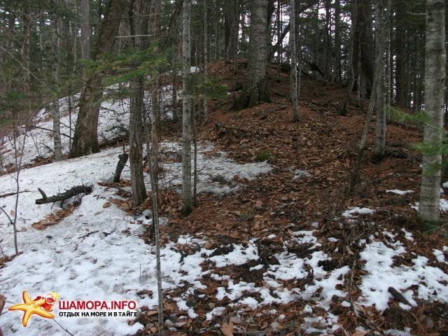Граница снежного покрова На хребте отчетливо видно различие в наличии снега на северном и южном склонах. | Весна  на Алексеевке