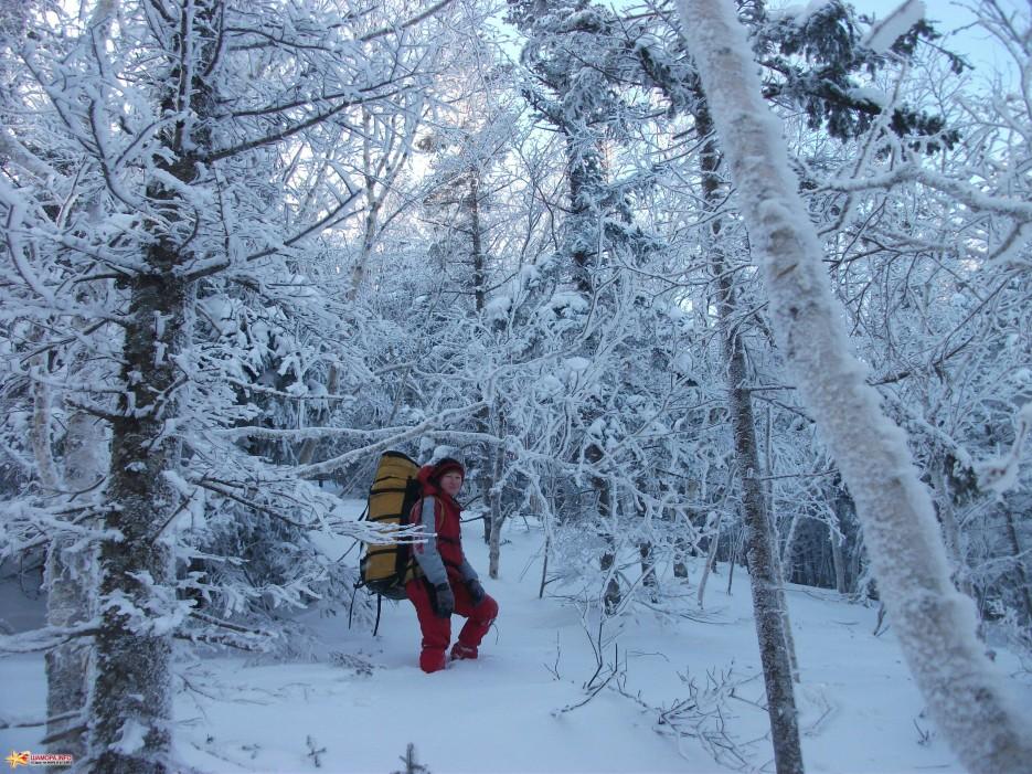 Новогодняя сказка | Какого цвета новогодний снег