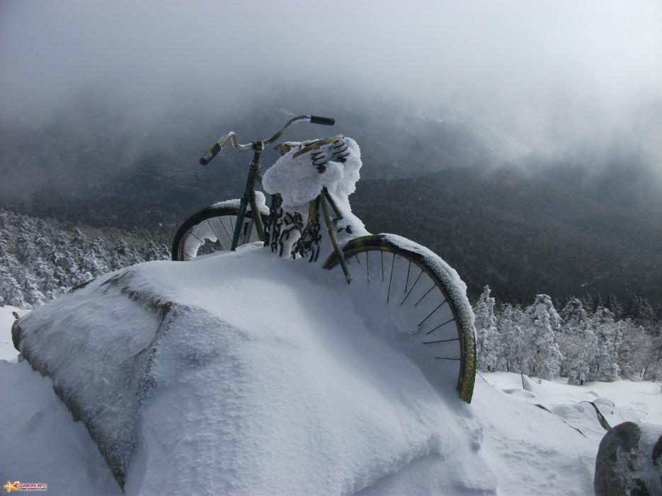 Скучает без Васи... | Какого цвета новогодний снег