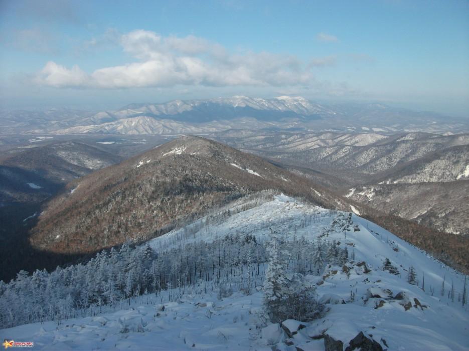 Вдали Воробей | Какого цвета новогодний снег