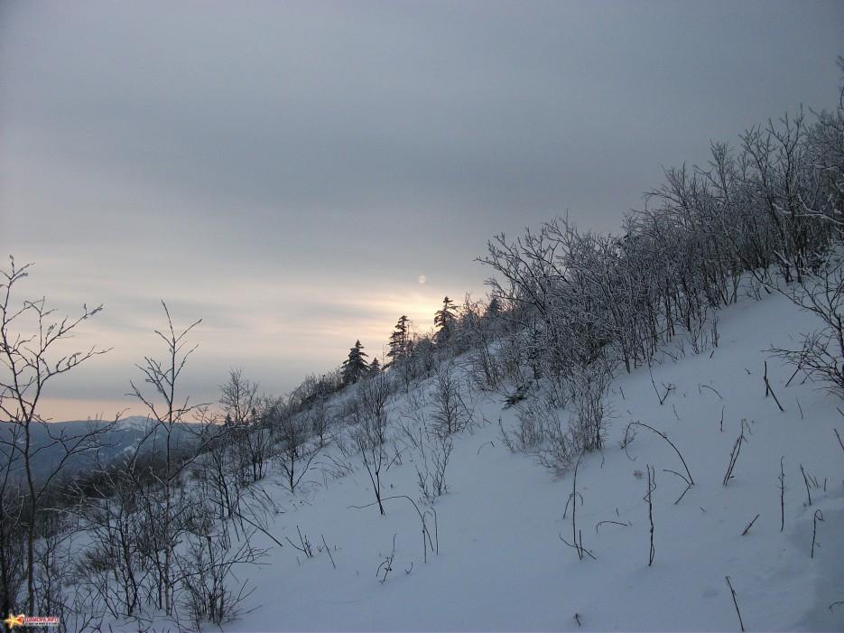 Близок вечер. На спуске. | г.Туманная (1230м, хр.Большой Воробей) 12.12.2010