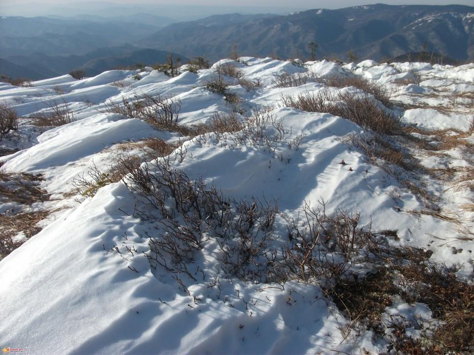 Снежные холмики на вершине горы Лысой | Зима на Партизанском хребте