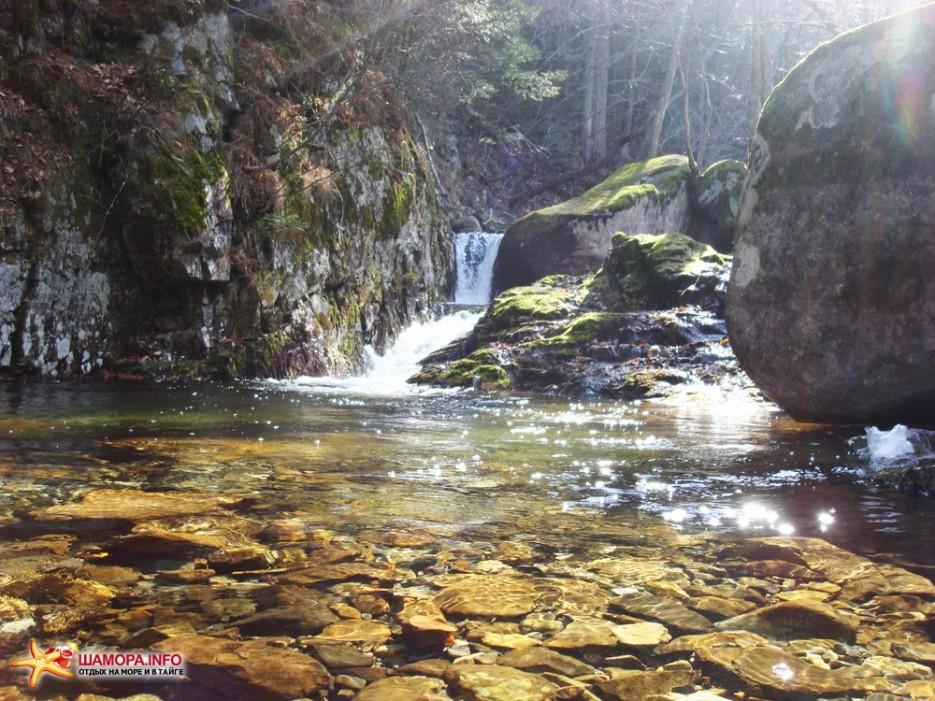 Фото 12985 | Пидан-загадка природы....