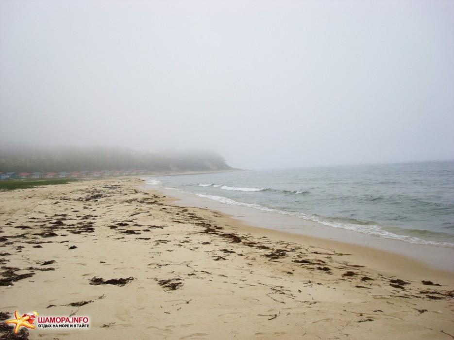 конец мая...Ливадия в тумане | Любимый край!