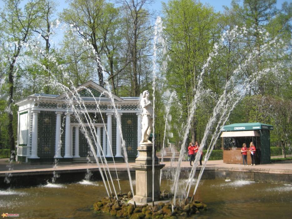 Фото 14618 | фонтаны петродворца-май 2010