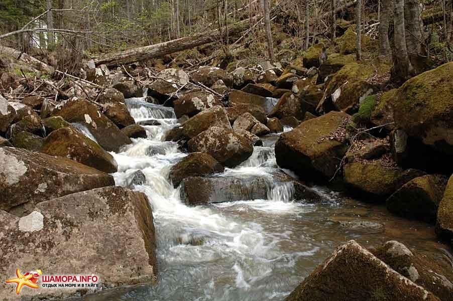 Фото 15669 | Шкотовские водопады