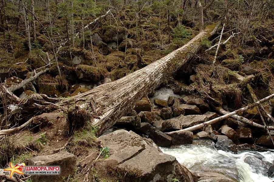 Фото 15670 | Шкотовские водопады
