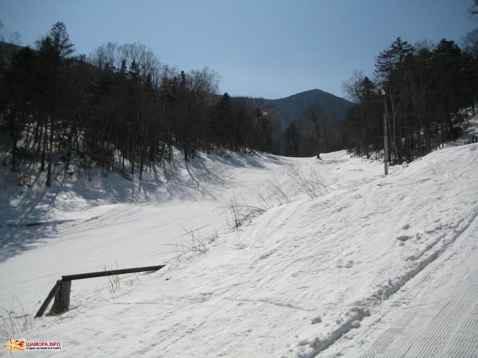 Фото 15736 | «Грибановка» март 2009