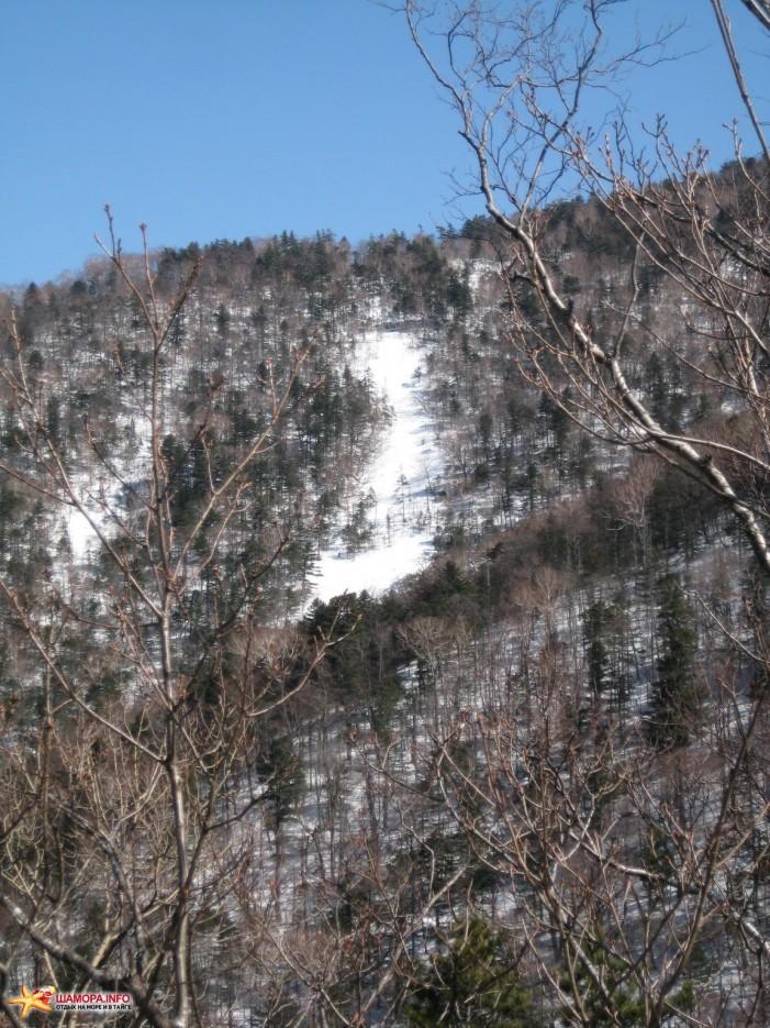 Фото 15743 | «Грибановка» март 2009