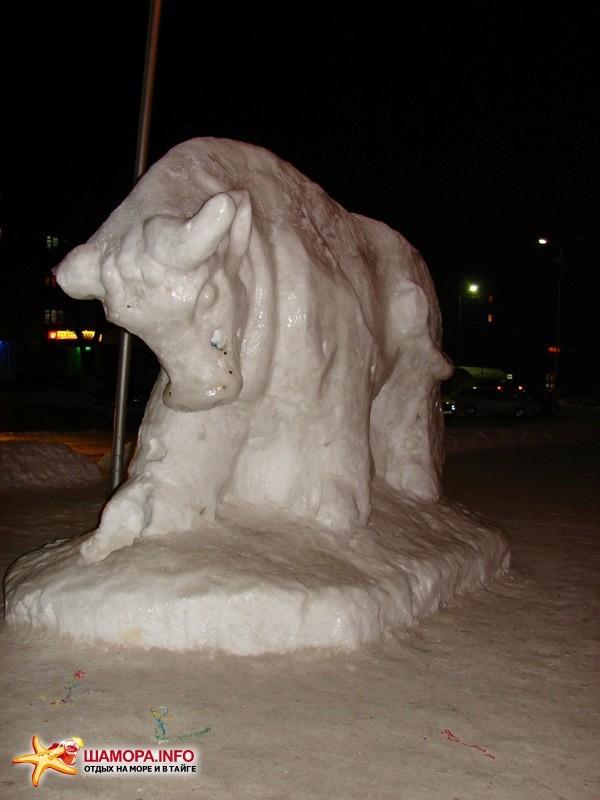 Фото 17065   Ледяное шоу в Арсеньеве