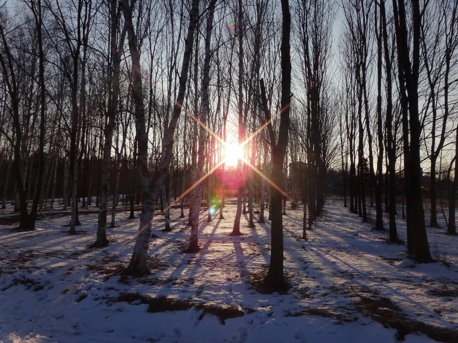 Парк....г.Артем | Приморье