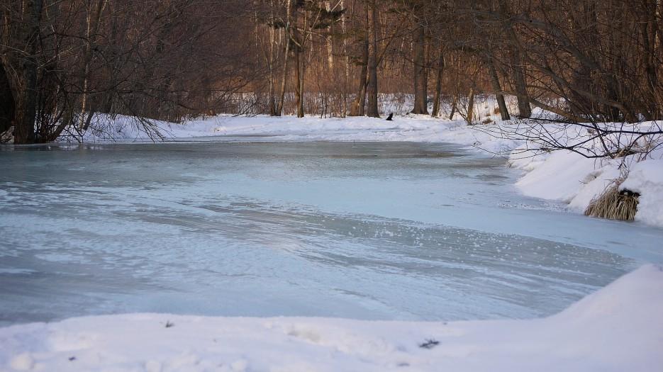 Лес. Речка. Морозяка.... | Разное