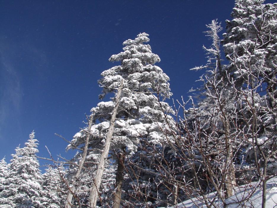 Синее горное небо на вершине Фалазы. | Горы Приморья