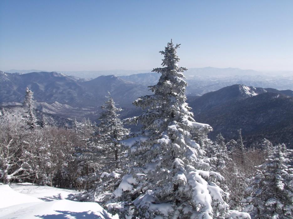 Вид с вершины Фалазы. | Горы Приморья