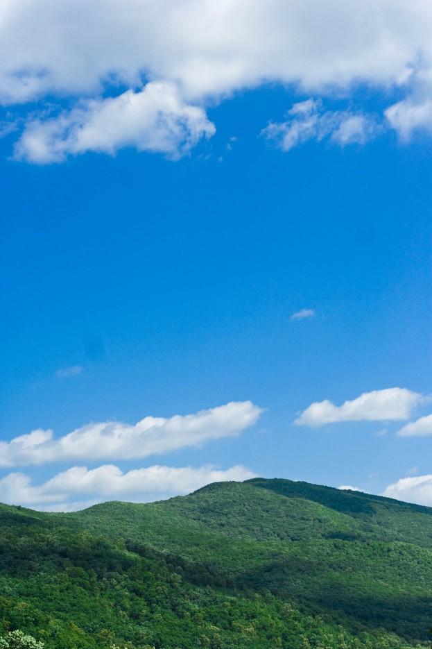 Фото 18236 | «Прекрасное Приморье»