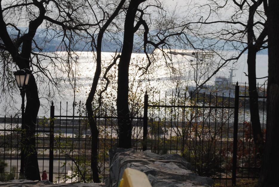 Сквозь деревья. Карабельная набережная   Владивосток