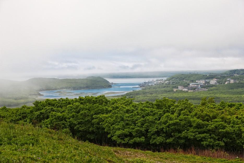 Вид на город и лес с побережья | Летние виды Преображения