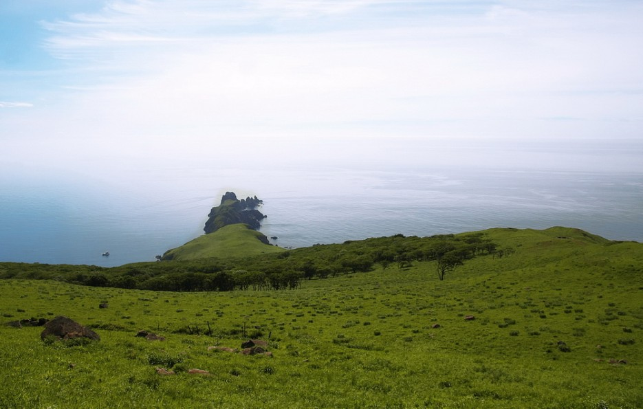 Вид на противоположный берег острова. | остров Аскольд