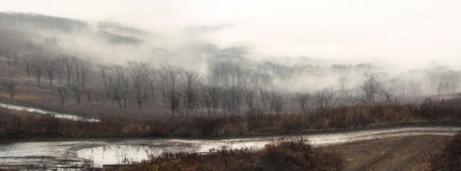 Дорога к форту Суворова. Осенний туман. | Владивосток моими глазами