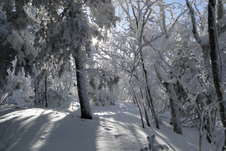 Мне солнце освещало путь наверх. | гора Фалаза (Литовка). Шкотовский р-он.