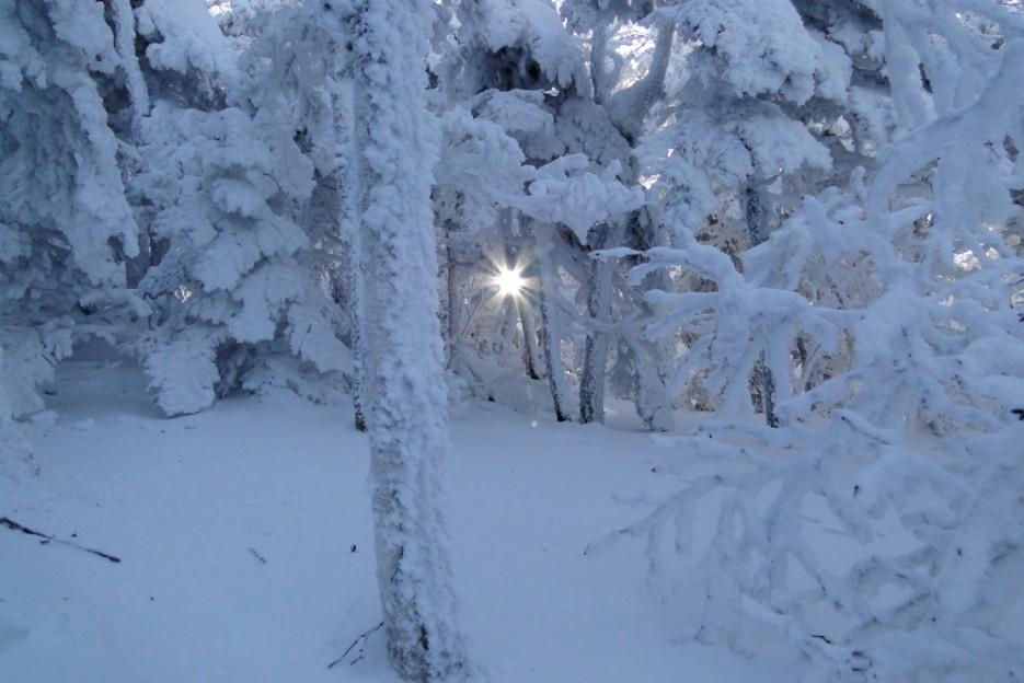 Ближе к вершине- Царство Снежной Королевы. | гора Фалаза (Литовка). Шкотовский р-он.