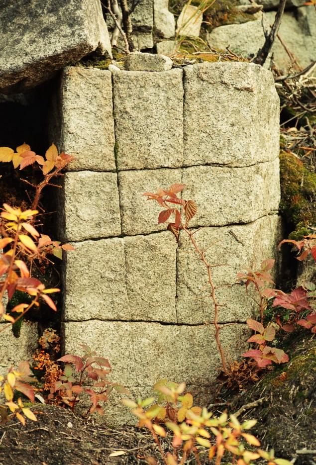 Камни на пути к вершине горы Пидан. Шкотовский район. | Гора Пидан Ливадийского хребта. Шкотовский район.