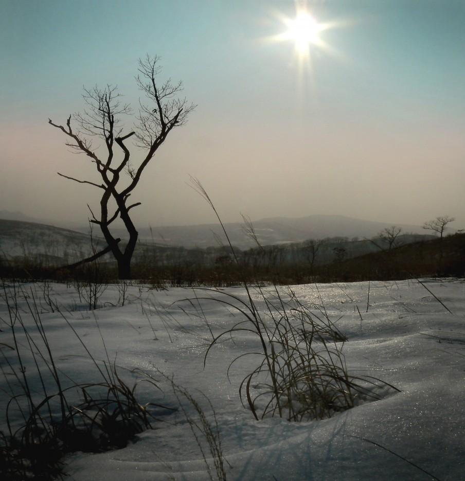 Холодный вечер.   Возле рнки Брусья, Хасанский р-н.. | Леса, реки, горы Хасанского района