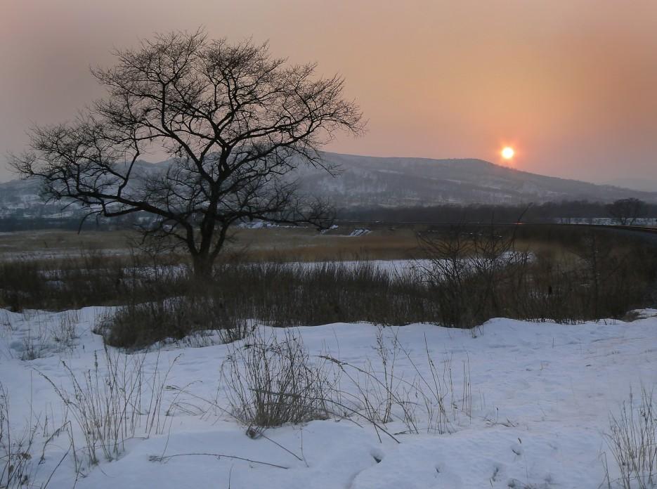 Зимний вечер.  Возле реки Брусья. | Леса, реки, горы Хасанского района