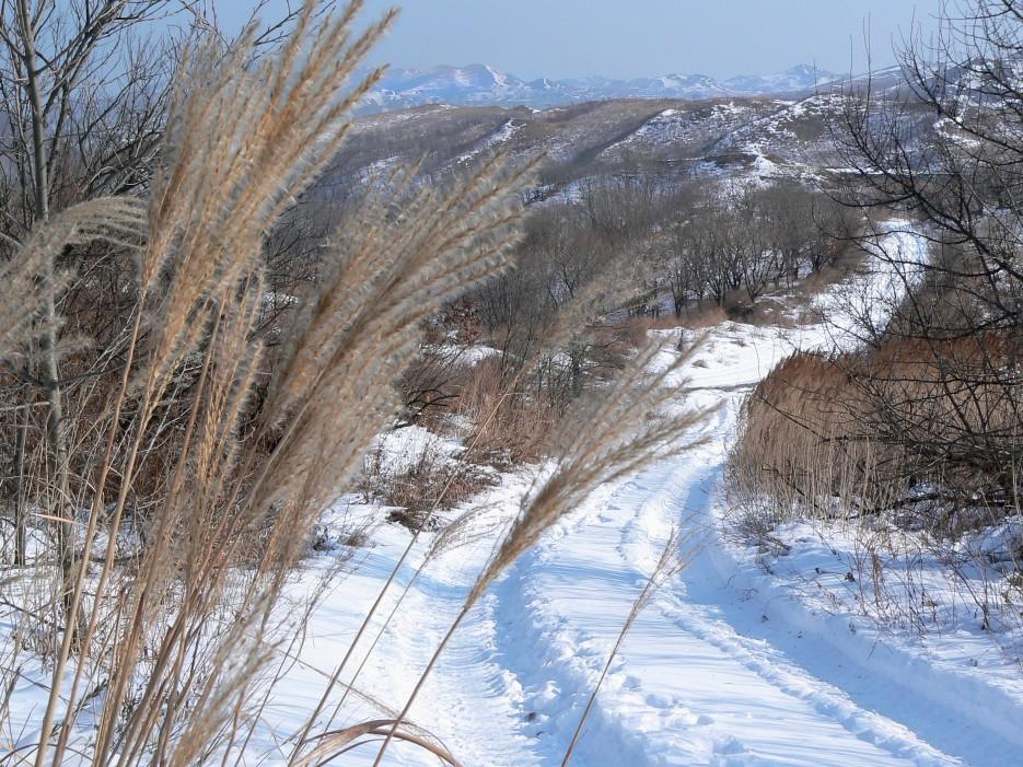 Зимняя дорога.  Дорога на вершину Генеральской сопки возле Славянки. | Леса, реки, горы Хасанского района