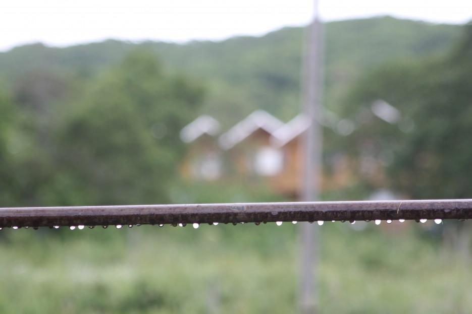 Первый осенний дождь в Андреевке. | Южное приморье.