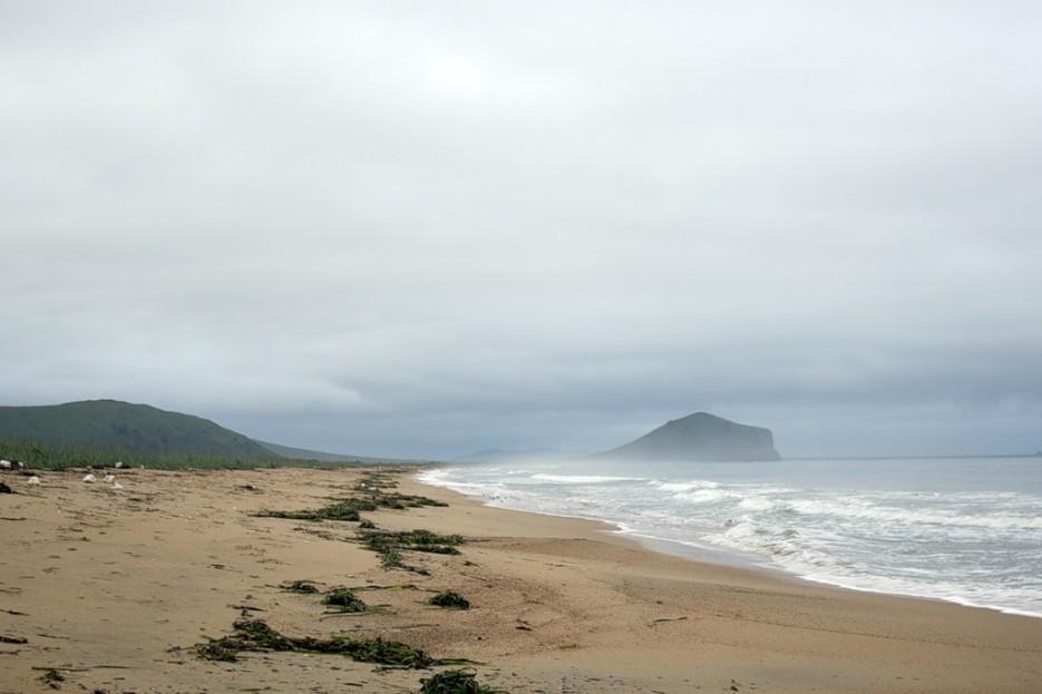 Утром на пляже | б. Бойсмана