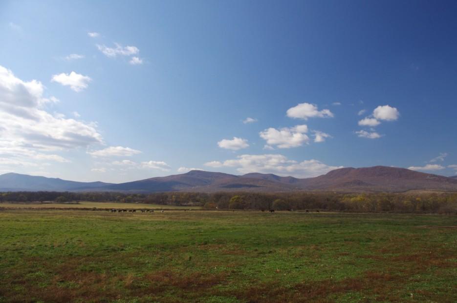 Вид на горы   Конные прогулки в районе села Хмельницкое.