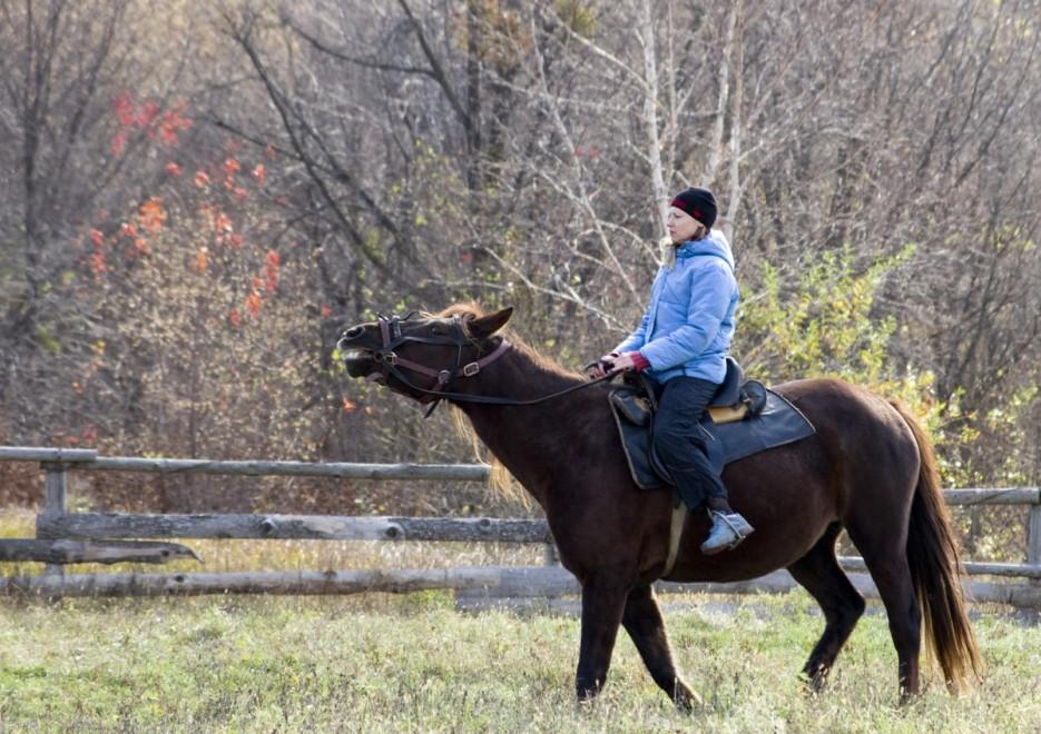 прогулка | Конные прогулки в районе села Хмельницкое.