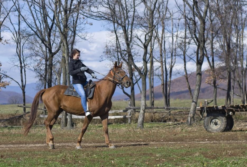 прогулка   Конные прогулки в районе села Хмельницкое.