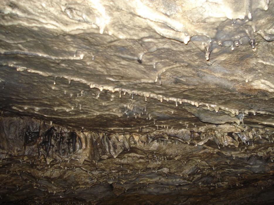Макрушенская пещера. Ольгинский район. | Пещера Макрушенская. Ольгинский район.