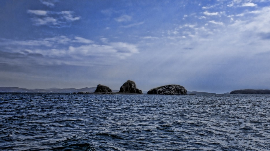 Фото 21273 | Остров Русский и бухта Новик