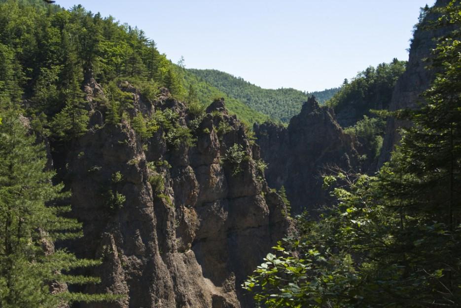 То самое ущелье, где несет свои волы Амгу и прячет один из самых больших водопадов Приморья. | Сияние северного Приморья