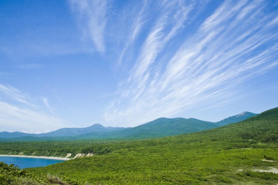 Чистейшее голубое небо сверху и такая же чистая и свежая зелень снизу. Только ты и природа. | Сияние северного Приморья