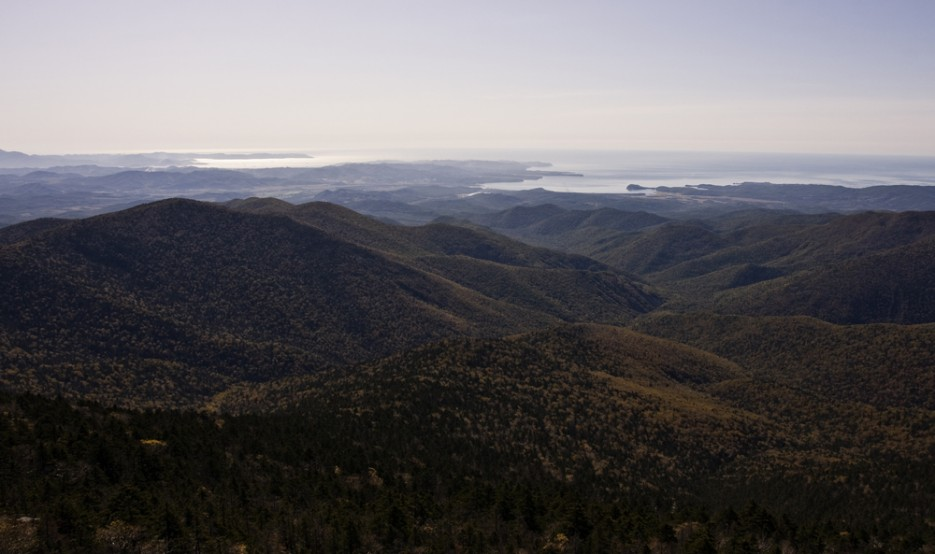 Вот такой вот он Ливадийский хребетв сторону Находки | Вид с вершины